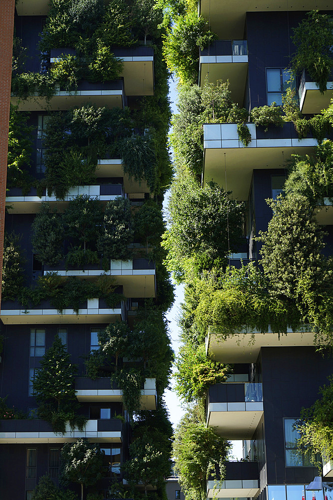 Bosco Verticale, Vertical Forest is a pair of residential towers designed by Boeri Studio in the Porta Nuova district, Bosco Verticale won the International Highrise Award, Milan, Lombardy, Italy, Europe