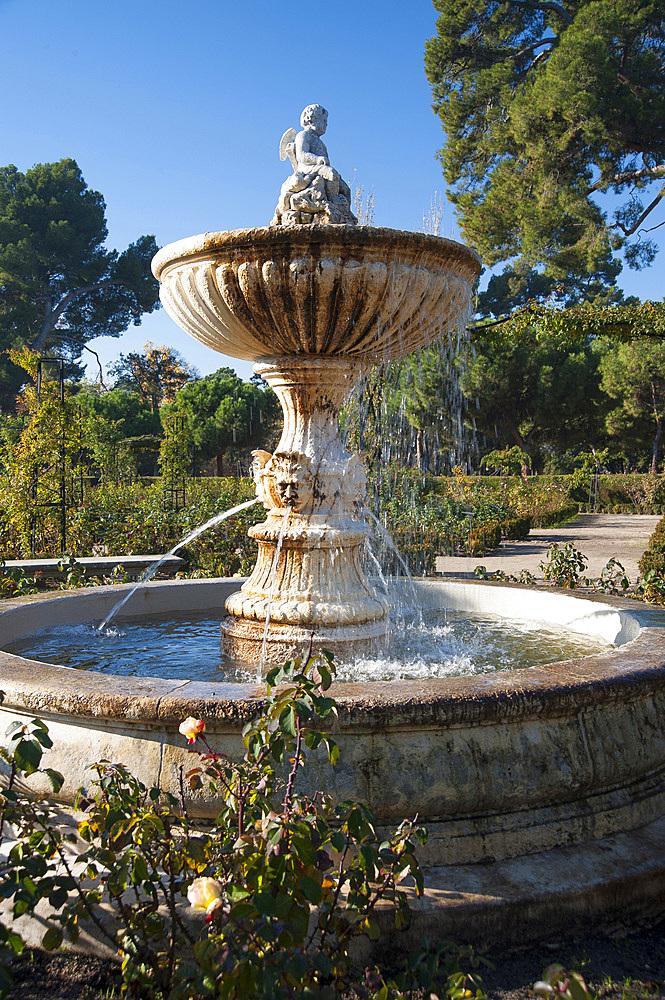Rose garden, Parco del Buen Retiro, Madrid, Spain, Europe