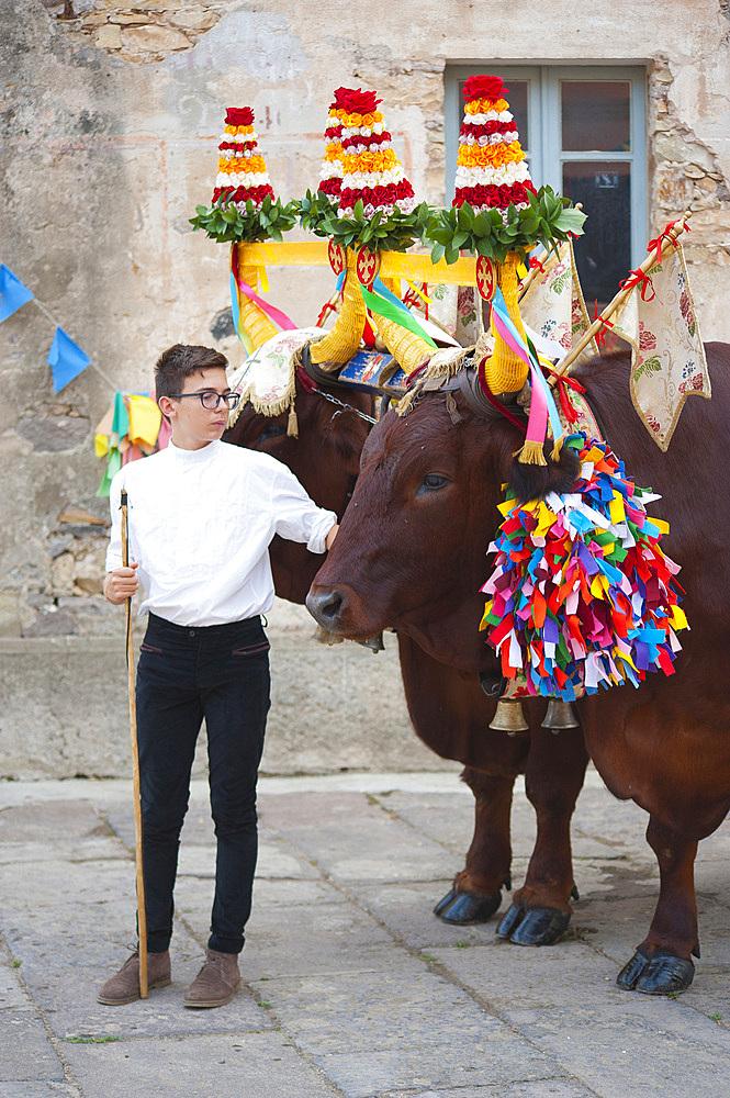 Chariot, Procession of Santa Maria de is Aquas, Sardara, Sardinia, Italy, Europe