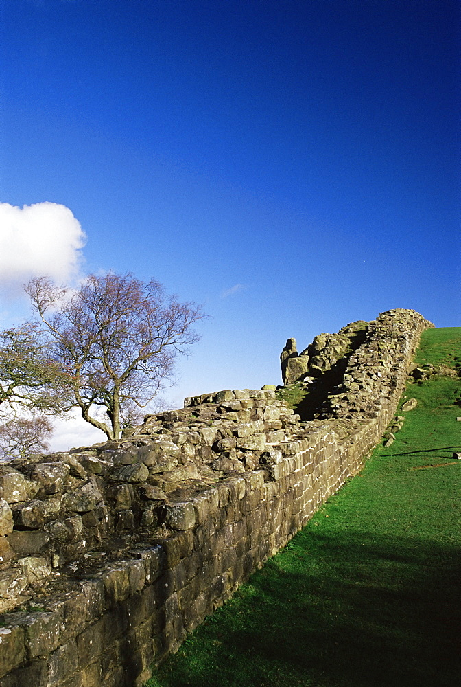 Roman Wall, Walltown Crags, Hadrians wall, Unesco world heritage site, Northumbria, England, United Kingdom, Europe