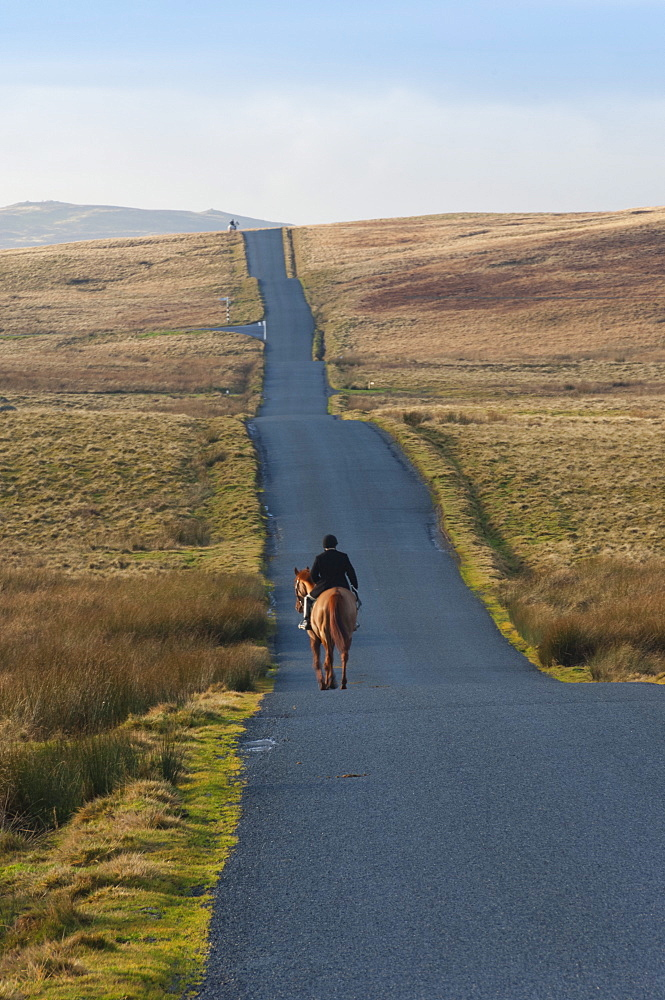 Lone Hunter, Caldbeck Fell Road, Back o'Skiddaw, Cumbria, England, United Kingdom, Europe