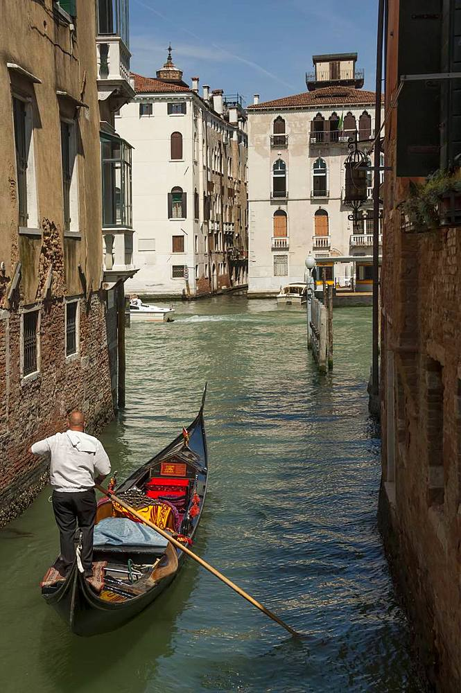 Gondola and gondolier, Side canal, Venice, UNESCO World Heritage Site, Veneto, Italy, Europe