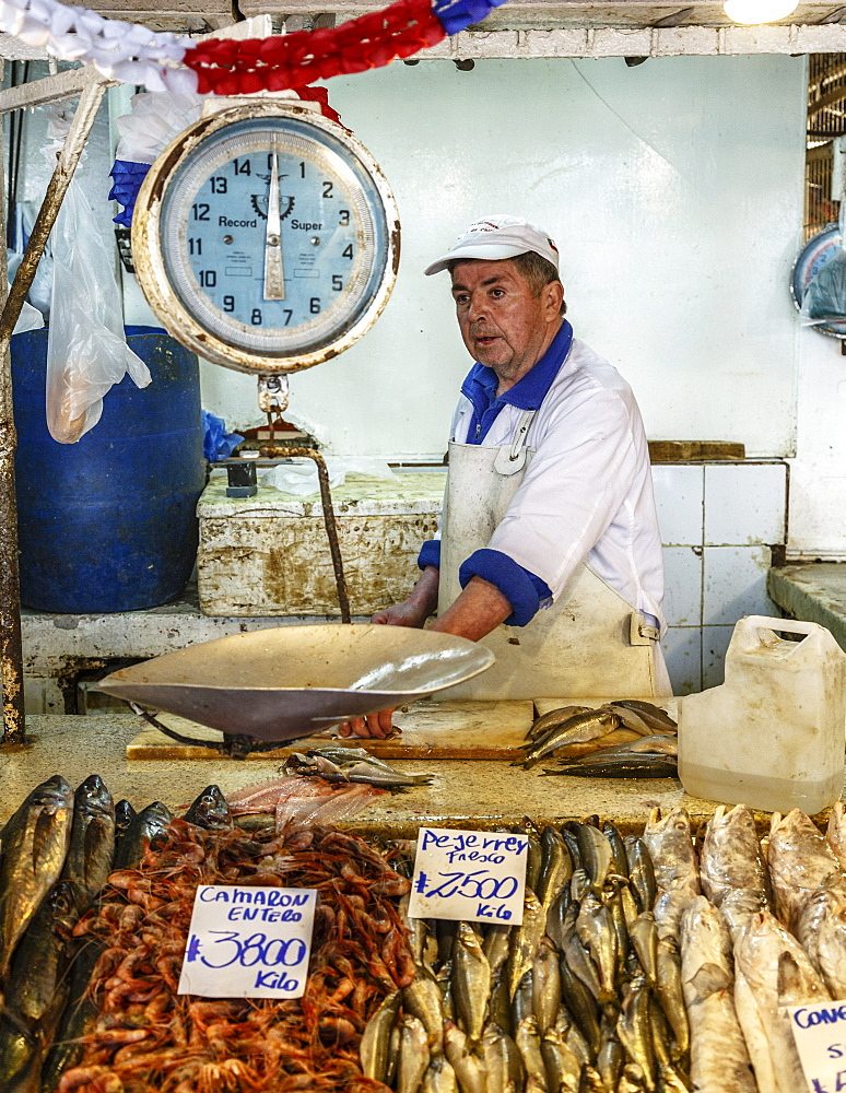 Fish and seafood stall at Mercado Central, Santiago, Chile, South America