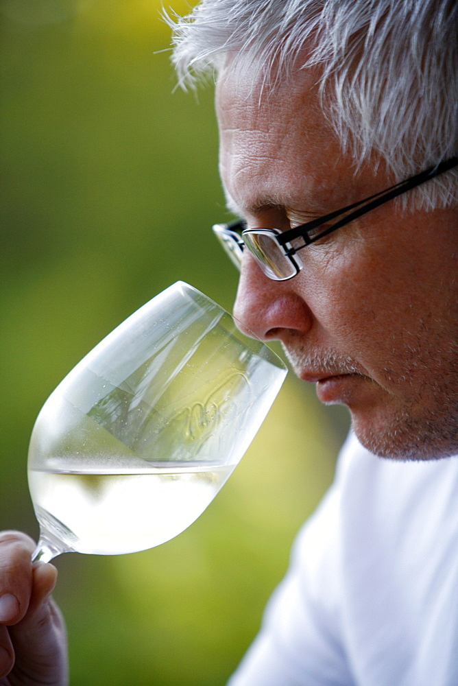 Man tasting white wine, Mendoza, Argentina, South America - 749-983