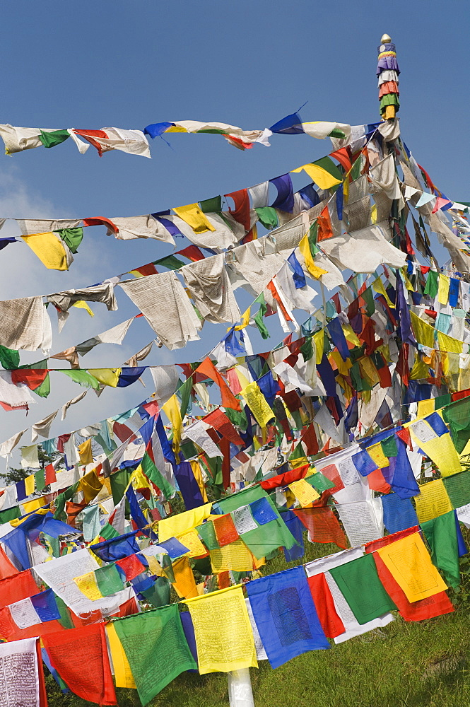 Buddhist prayer flags, McLeod Ganj, Dharamsala, Himachal Pradesh state, India, Asia - 756-461