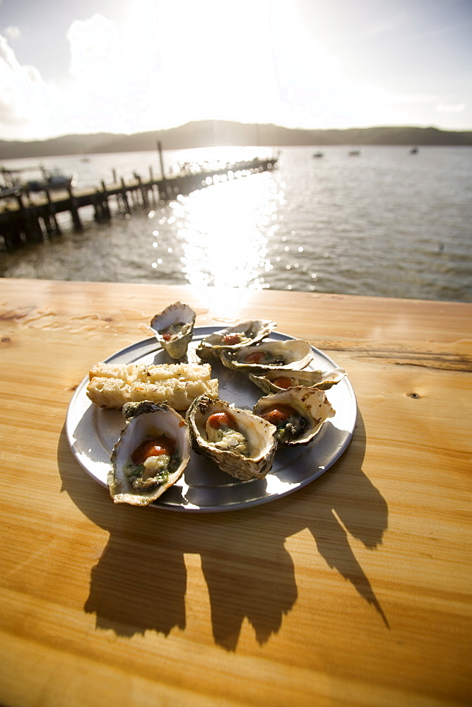Oysters on half shells, California, United States of America, North America - 757-207