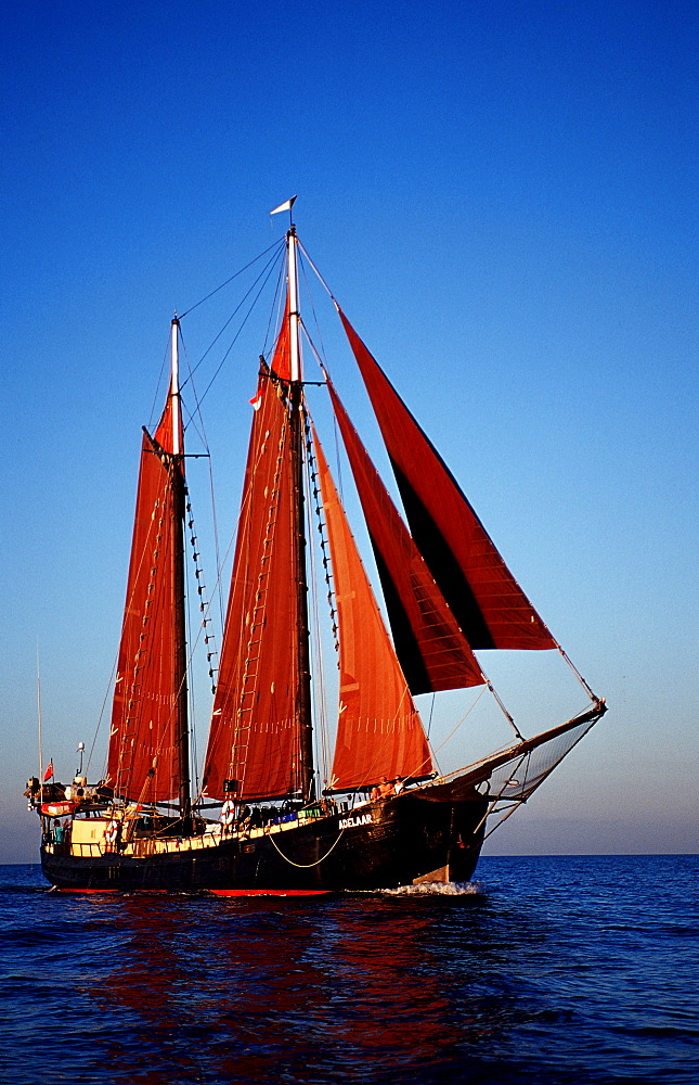Sailing Ship, Tall Ship Adelaar, Indonesia, Indian Ocean, Komodo National Park