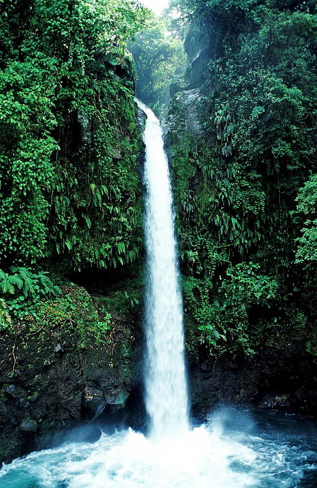 Waterfall, Costa Rica, South america, La Paz Waterfall Gardens