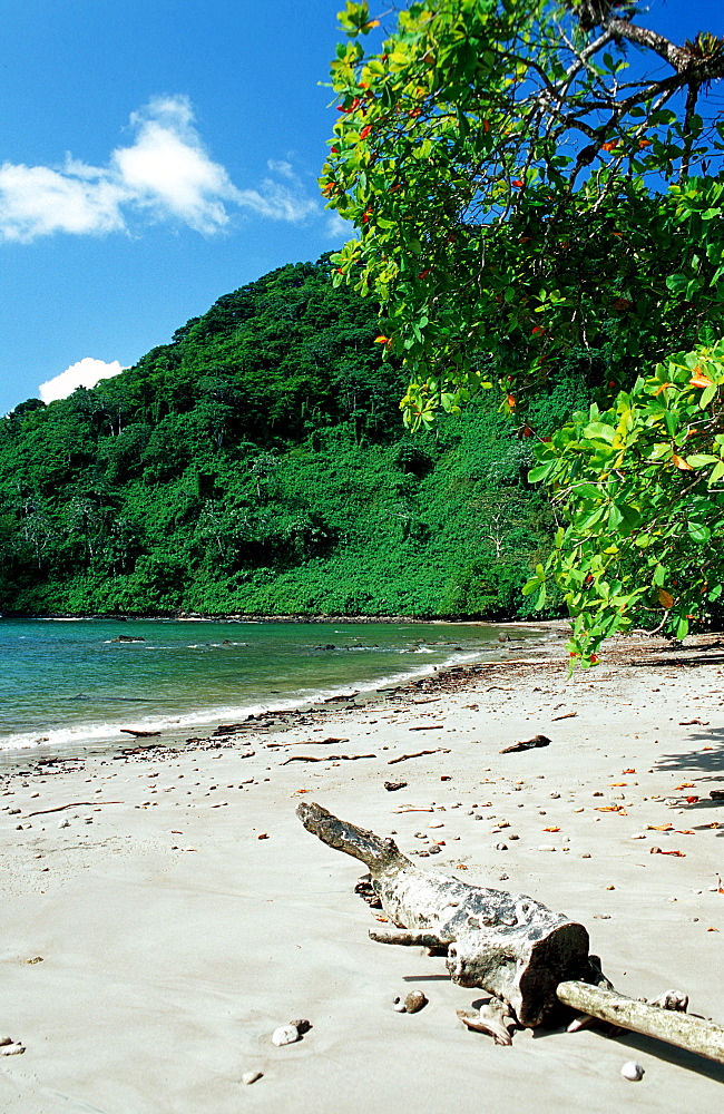 Untouched sandy beach, Costa Rica, South america, Cocos Island, South america, Latin america - 759-1979