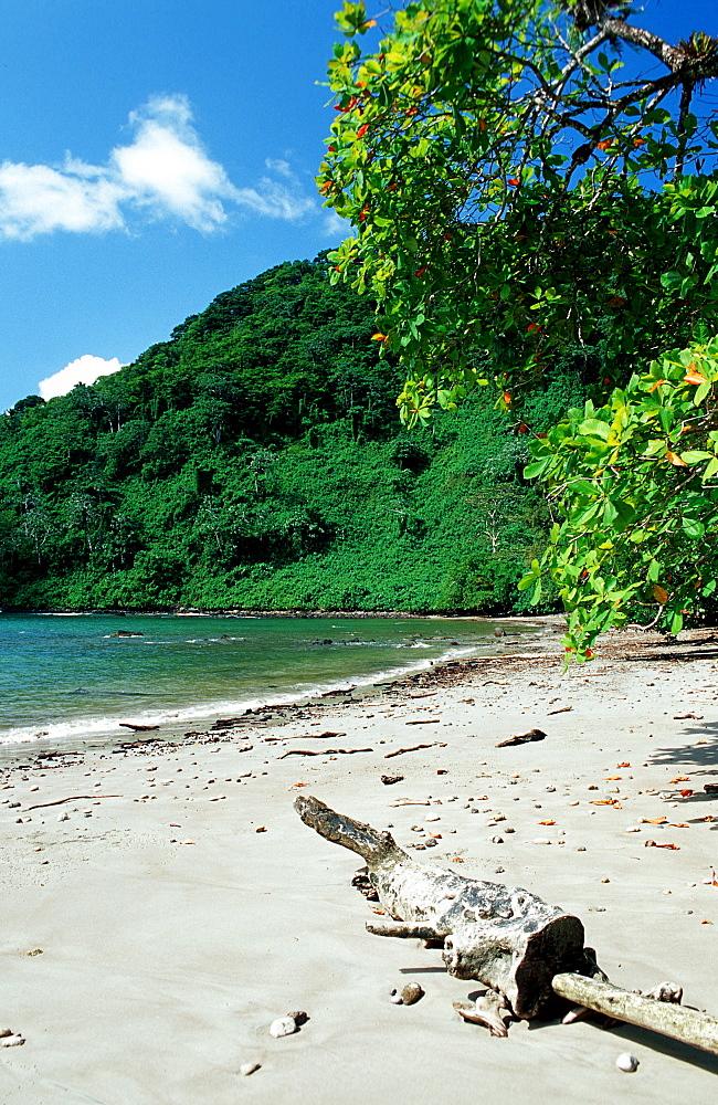 Untouched sandy beach, Costa Rica, South america, Cocos Island, South america, Latin america - 759-1979