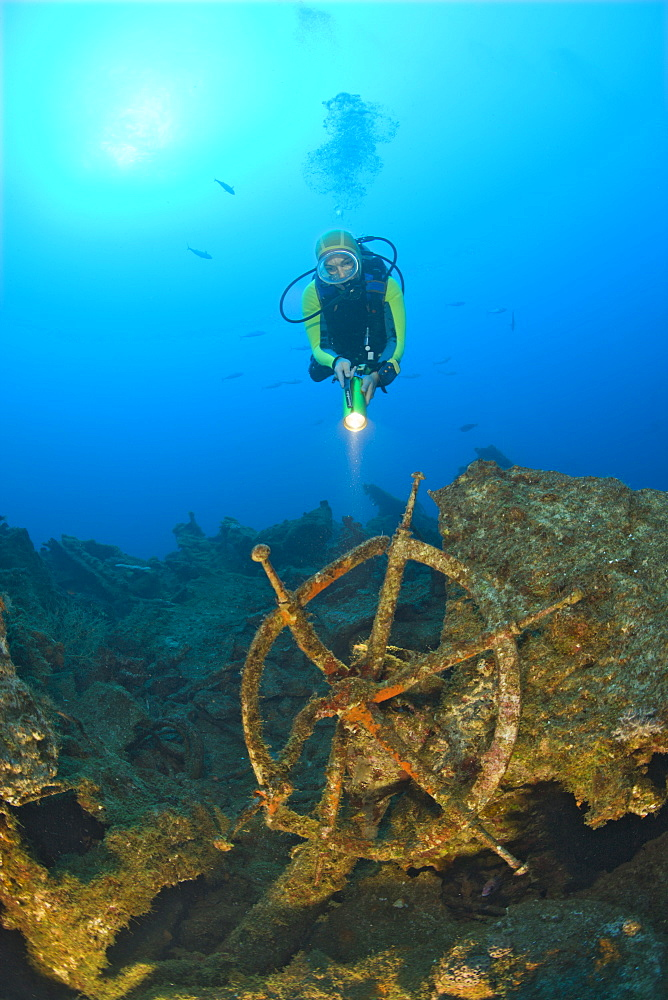 Diver discover Wheel and Wreckage at USS Carlisle Attack Transporter, Marshall Islands, Bikini Atoll, Micronesia, Pacific Ocean