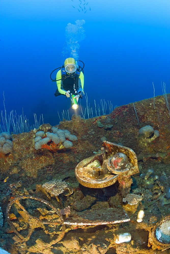 Diver discover Artifacts at Wreck of USS Carlisle Attack Transporter, Marshall Islands, Bikini Atoll, Micronesia, Pacific Ocean