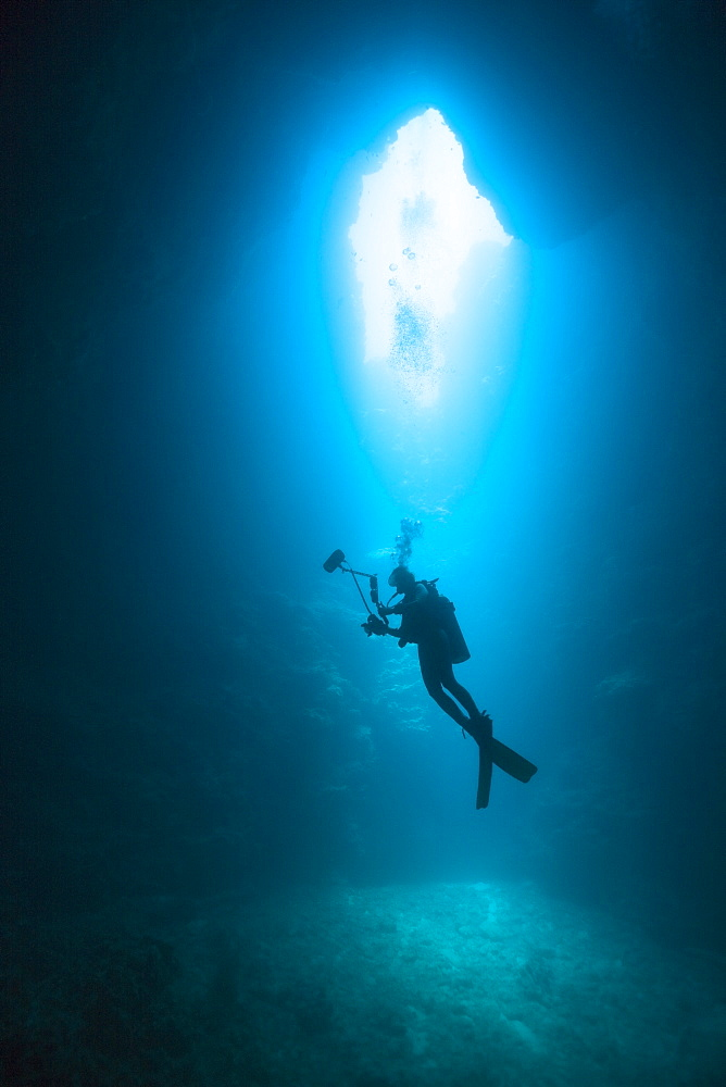 Diver in Siaes Tunnel Cave, Micronesia, Palau