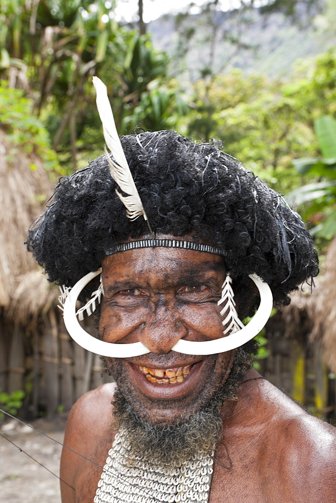 Dani warrior, Baliem Valley, West Papua, Indonesia, Southeast Asia, Asia - 759-9202