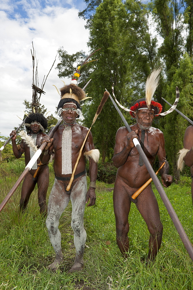 Warriors of Dani tribe, Baliem Valley, West Papua, Indonesia, Southeast Asia, Asia - 759-9261