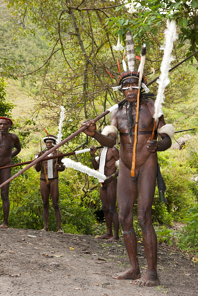Warriors of Dani tribe, Baliem Valley, West Papua, Indonesia, Southeast Asia, Asia - 759-9265