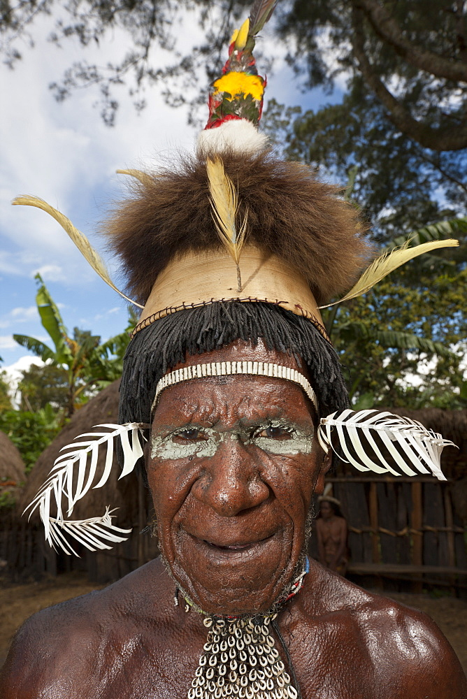 Warrior of Dani Tribe, Baliem Valley, West Papua, Indonesia, Southeast Asia, Asia - 759-9284