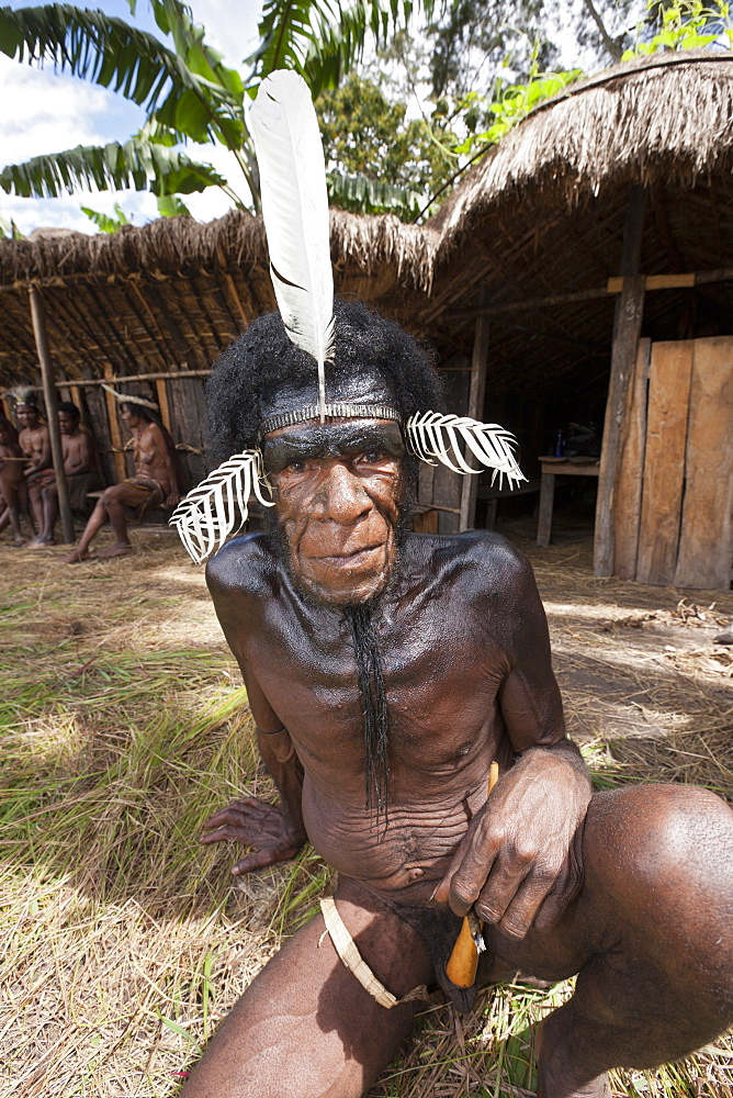 Warrior of Dani tribe, Baliem Valley, West Papua, Indonesia, Southeast Asia, Asia - 759-9309