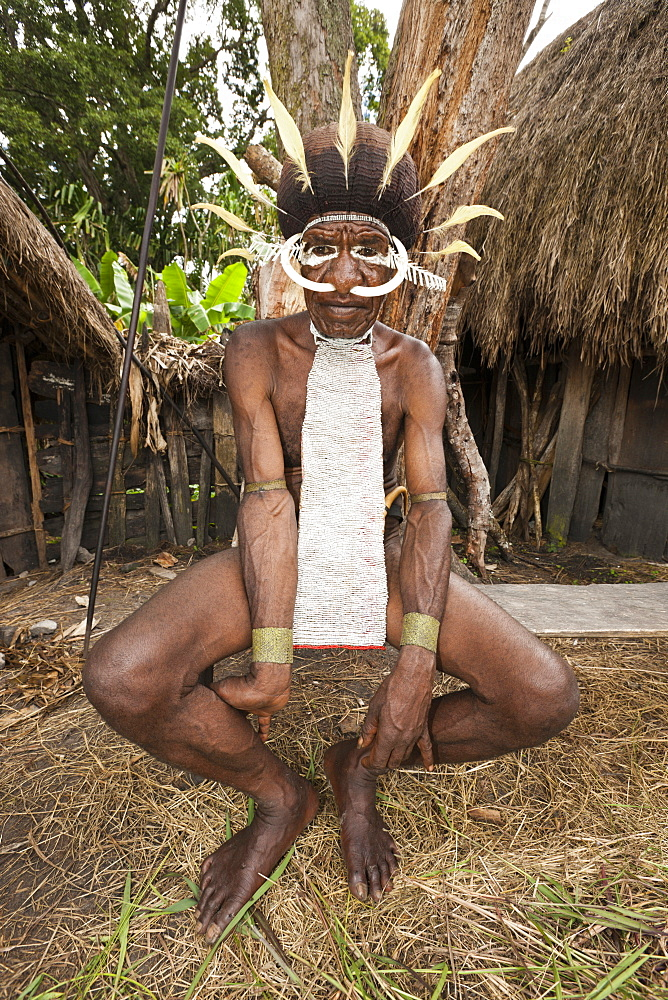 Warrior of Dani tribe, Baliem Valley, West Papua, Indonesia, Southeast Asia, Asia - 759-9329