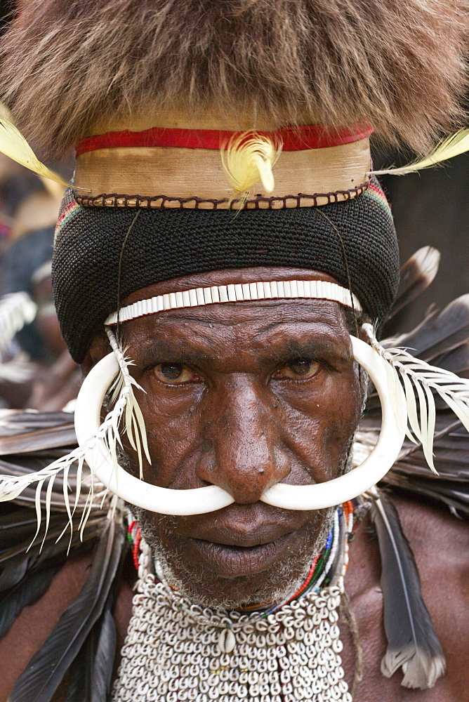 Warrior of Dani tribe, Baliem Valley, West Papua, Indonesia, Southeast Asia, Asia - 759-9336