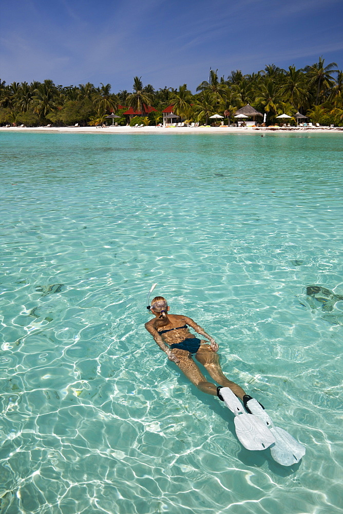 Snorkeling at Kurumba Island, North Male Atoll, Maldives, Indian Ocean, Asia - 759-9596
