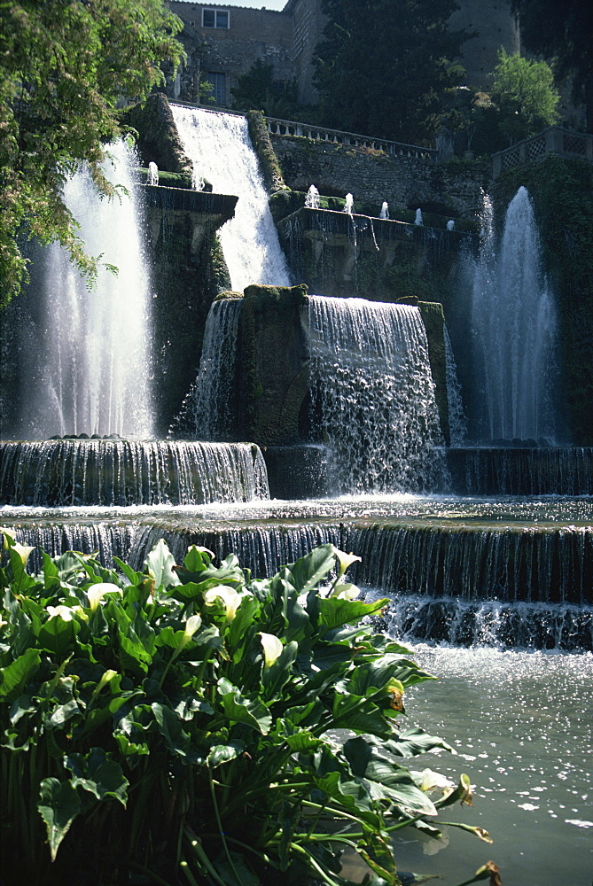 Tivoli Gardens, Villa d'Este, UNESCO World Heritage Site, Rome, Lazio, Italy, Europe - 76-4024