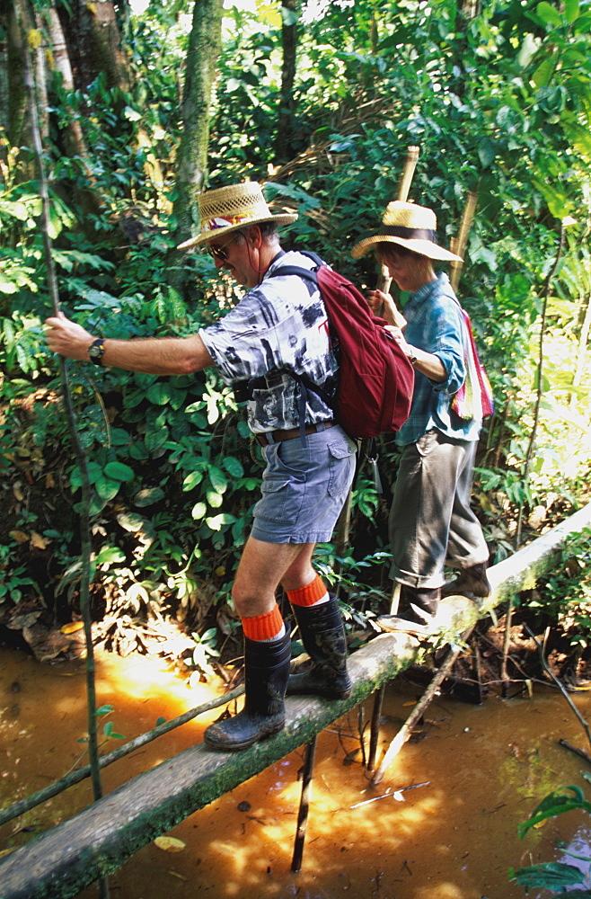 Amazon River Basin Napo River (Amazon tributary) down river at La Selva Jungle Lodge naturalists crossing jungle stream in rainforest, Oriente, Ecuador