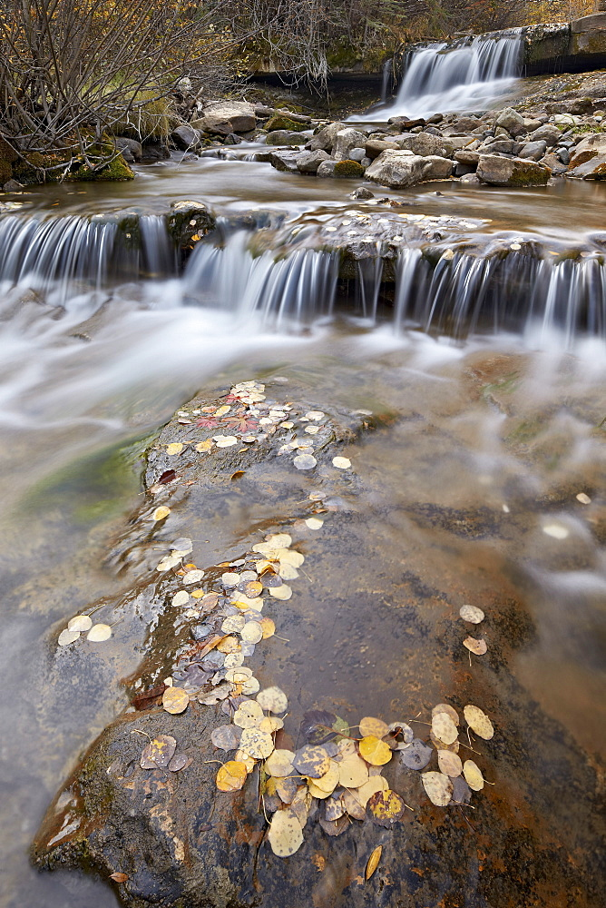 Falls on the Big Bear Creek in the fall, San Miguel County, Colorado, United States of America, North America