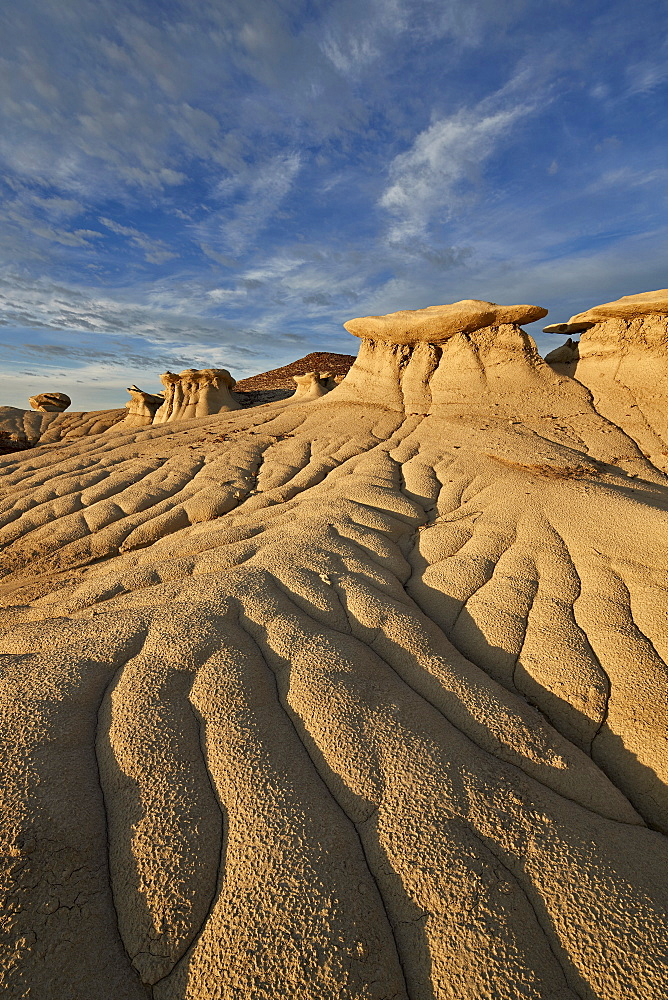 Badlands, Bisti Wilderness, New Mexico, United States of America, North America