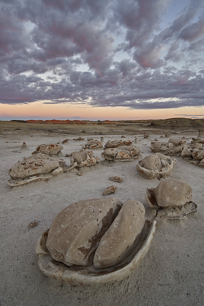 Egg Factory at dawn, Bisti Wilderness, New Mexico, United States of America, North America - 764-5941
