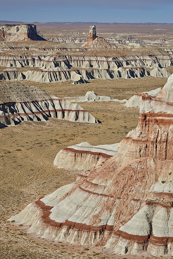 Badlands with red layers, Hopi Reservation, Arizona, United States of America, North America - 764-6247