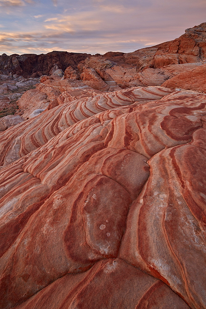 Sandstone forms at dawn, Valley Of Fire State Park, Nevada, United States of America, North America - 764-6253