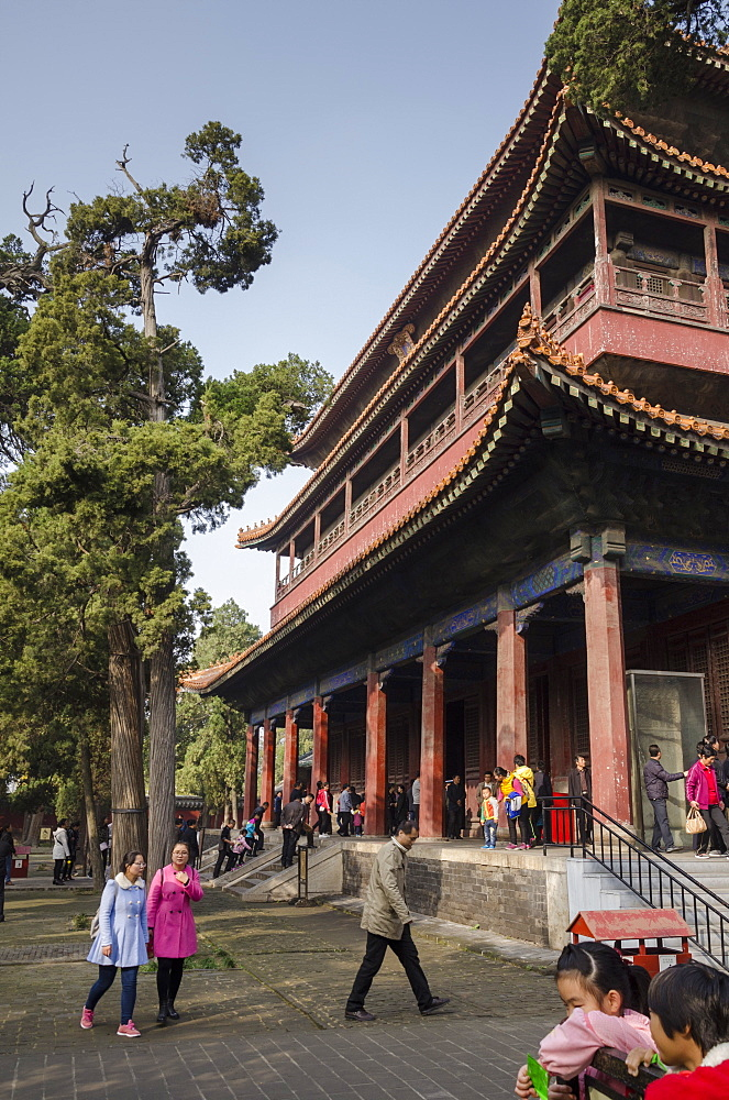 Confucius Temple, Qufu, UNESCO World Heritage Site, Shandong province, China, Asia - 767-1246