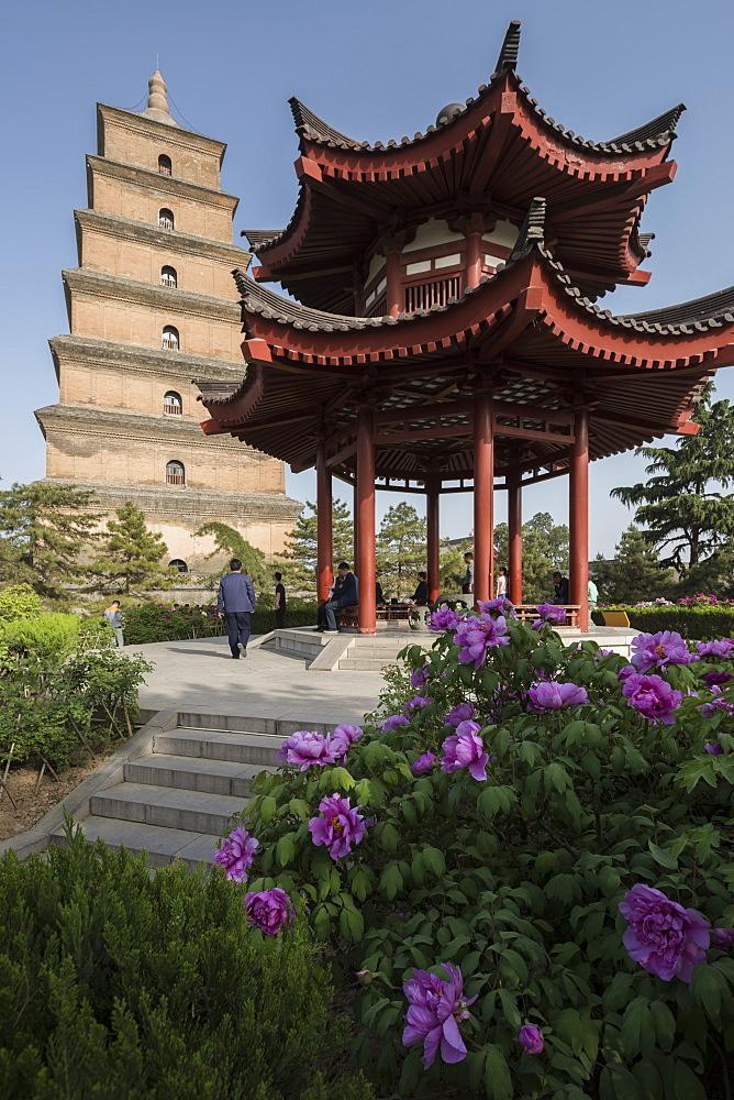 Giant Wild Goose Pagoda (Big Wild Goose Pagoda), Xi'an, Shaanxi Province, China, Asia - 767-1327