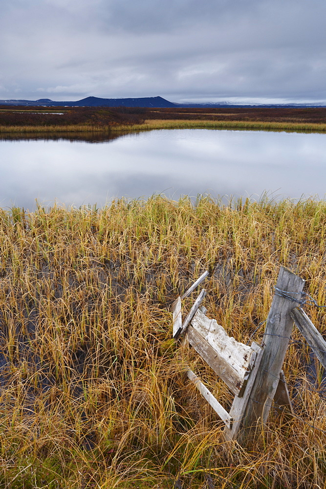 Lake Myvatn, bird protected area in autumn, north-west shore of lake, looking eastwards, Hverfjall volcano visible in the distance, Myvatn, north Iceland, Iceland, Polar Regions
