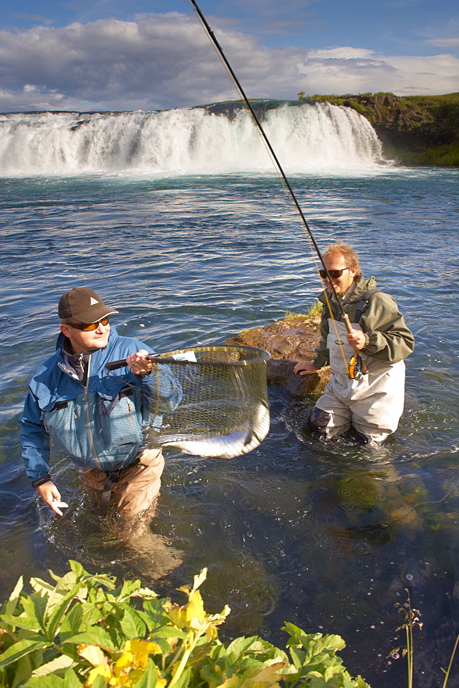 Salmon fly fishing in Iceland, Polar Regions