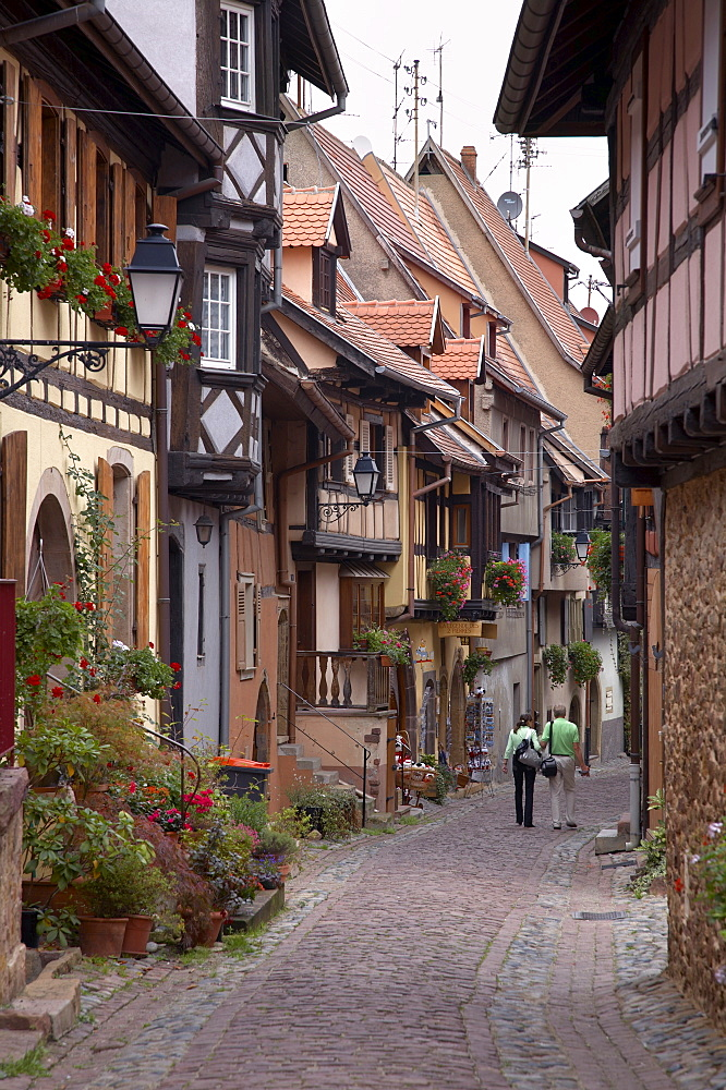 A street with traditional half-timbered houses in the charming village of  Eguisheim, Alsatian Wine Road, Haut Rhin, Alsace, France, Europe - 770-1745