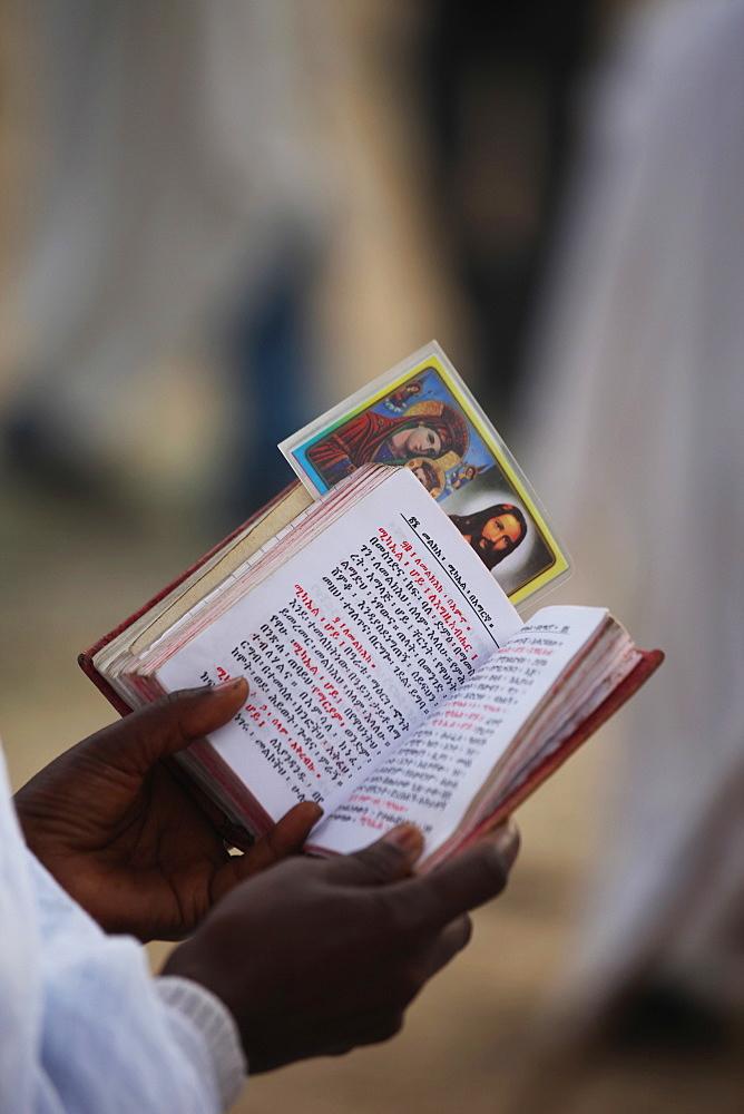 Pilgrim reading Bible in Amharic, Timkat festival, Gondar, Ethiopia, Africa - 772-2767