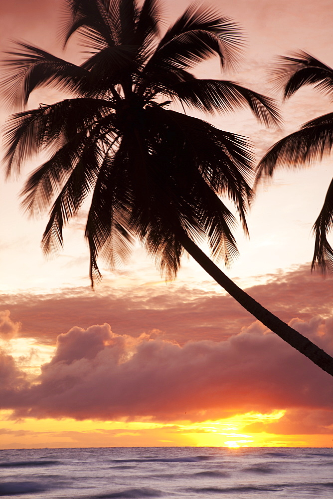 Tropical sunset, Bridgetown, Barbados, West Indies, Caribbean, Central America