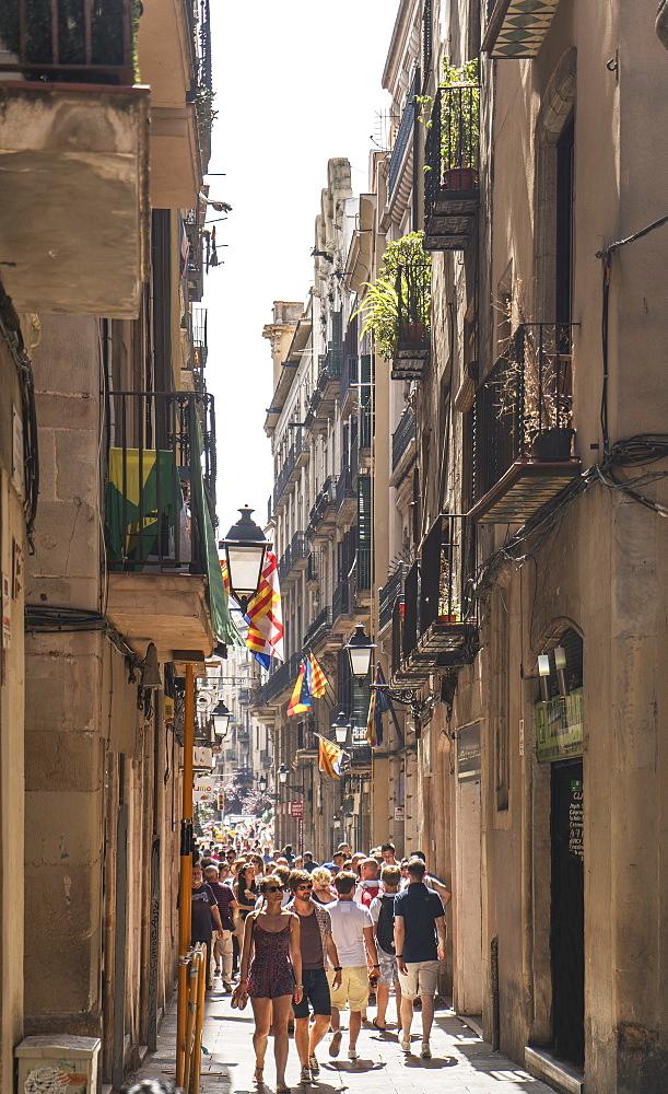 Barcelona, Catalonia, Spain, Europe - 772-3696