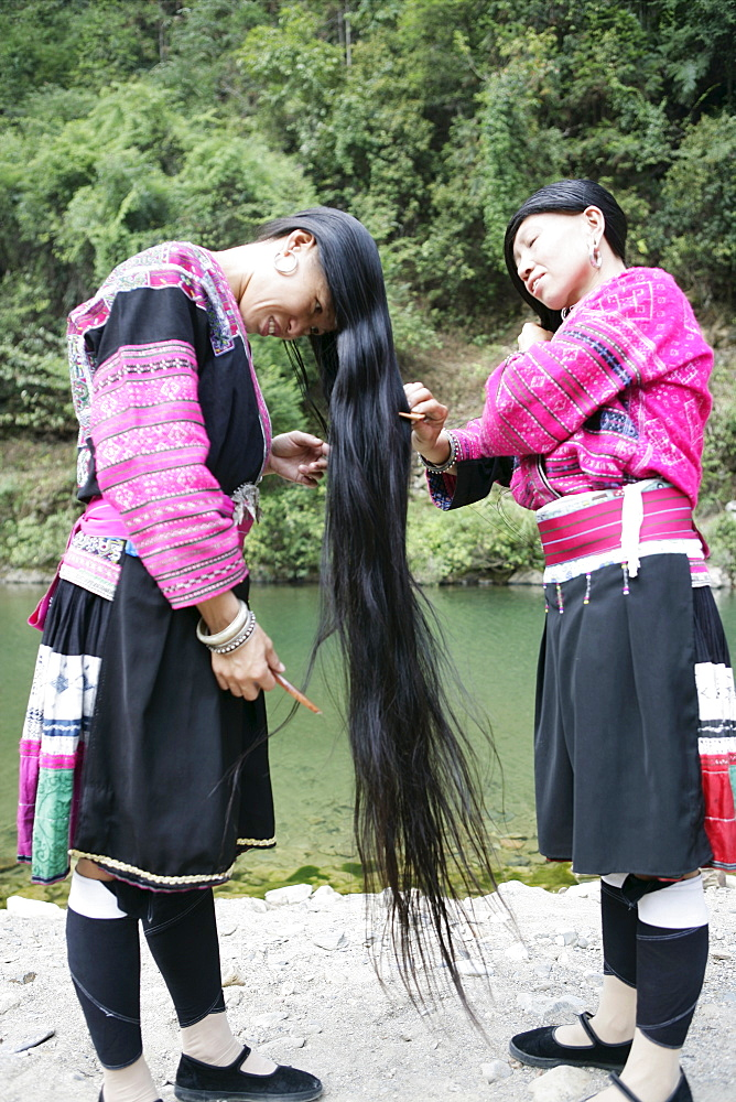 Women of Yao minority (Longhair tribe), Longsheng terraced ricefields, Guilin, Guangxi Province, China, Asia