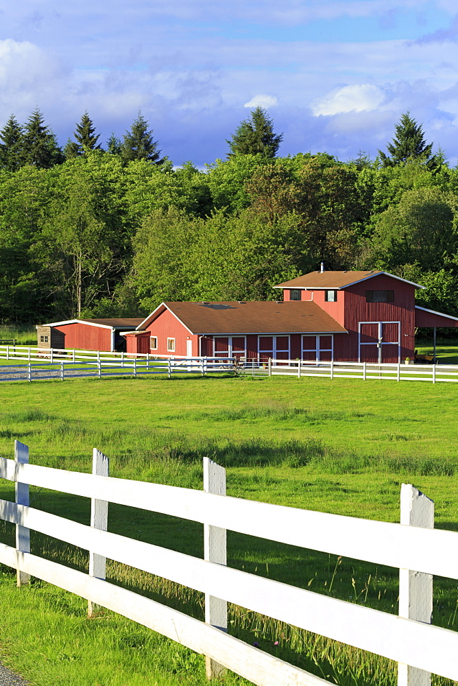 Barn on Vashon Island, Tacoma, Washington State, United States of America, North America