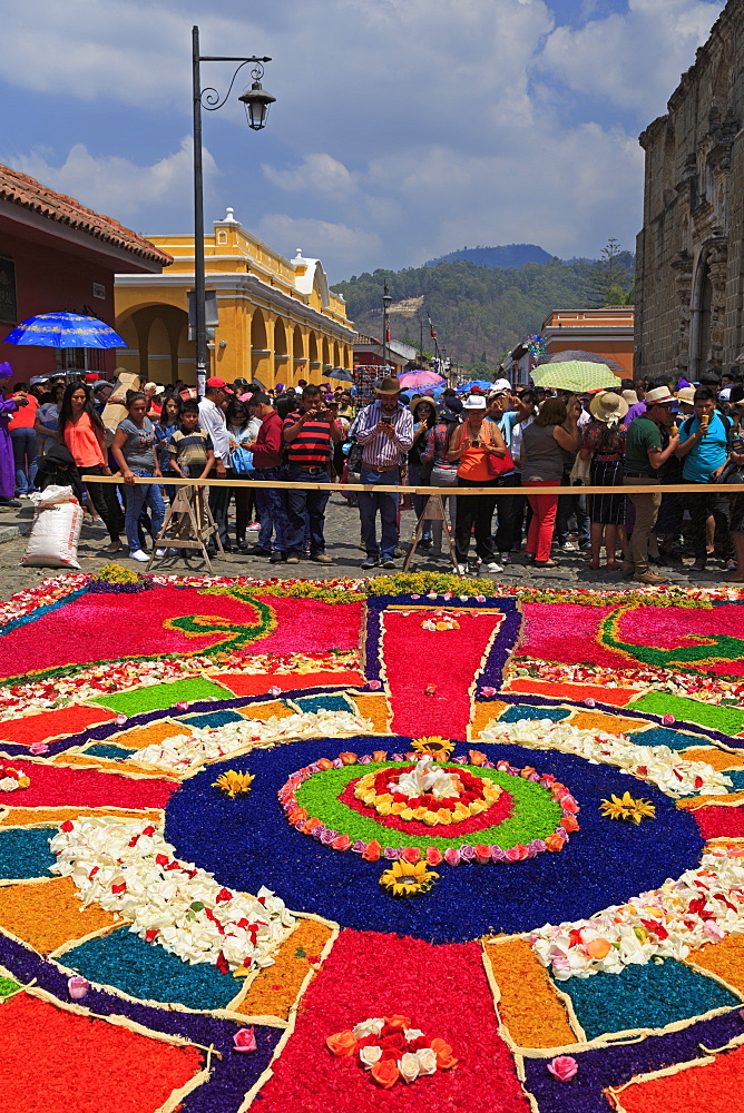 Alfrombras for Holy Week Procession, Antigua City, Guatemala, Central America - 776-5334