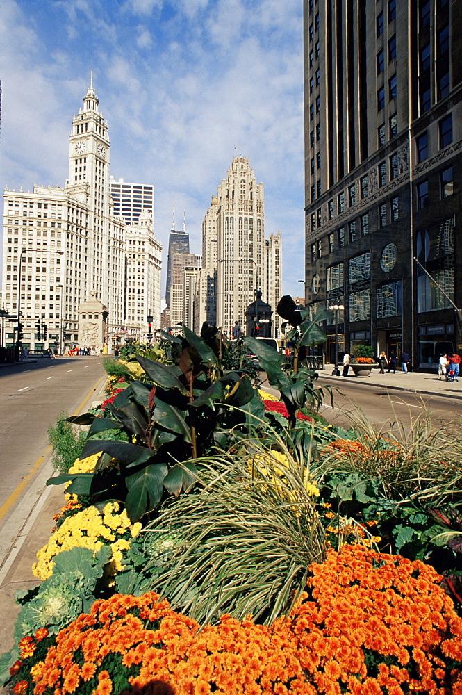 Michigan Avenue and Wrigley Tower, Chicago, Illinois, United States of America, North America