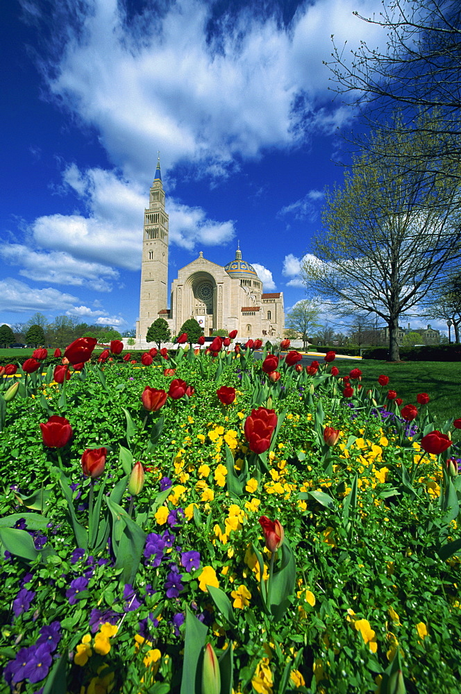 Basilica of the National Shrine of the Immaculate Conception, Washington D.C., United States of America, North America