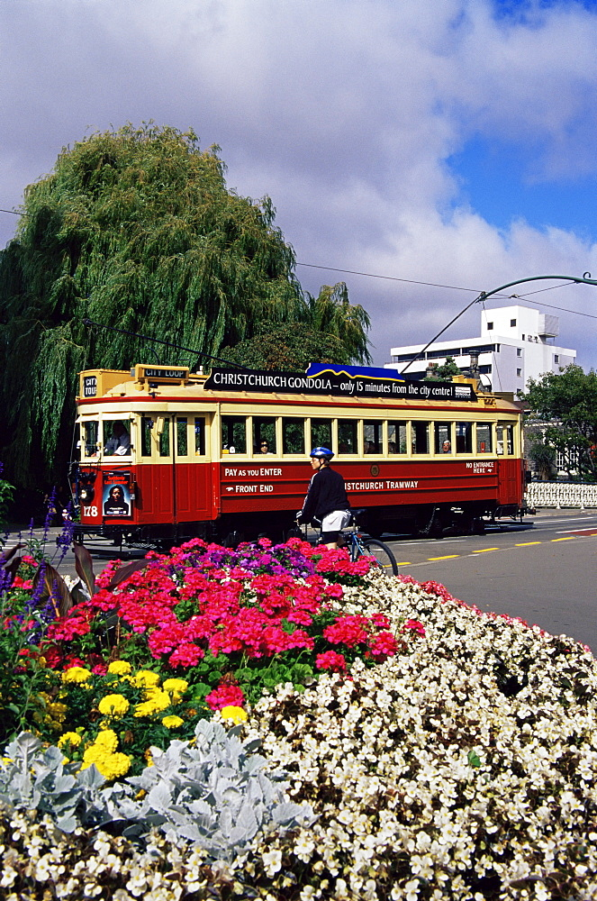 City tram, Christchurch, Canterbury, South Island, New Zealand, Pacific