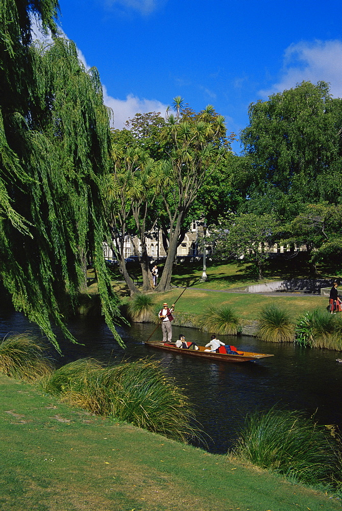 Punting on the Avon River, Christchurch, Canterbury, South Island, New Zealand, Pacific
