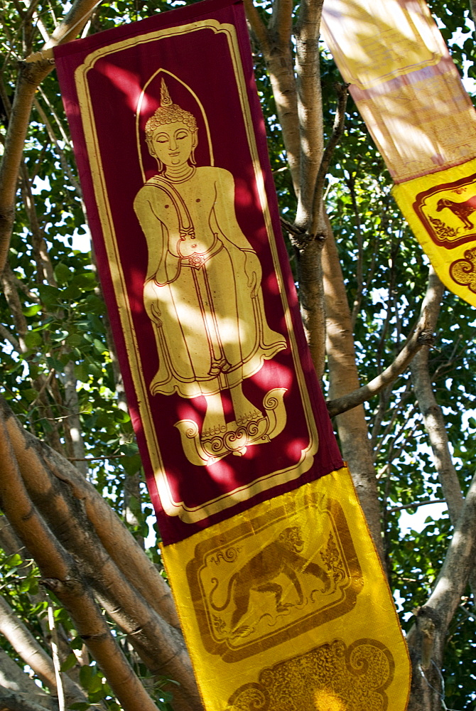 Buddhist flags in temple trees, Chiang Mai, Thailand, Southeast Asia, Asia - 784-257