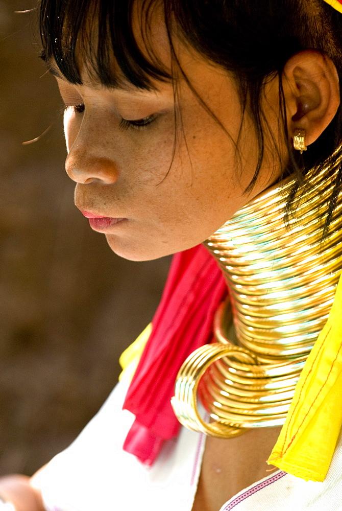 Long neck woman, Karen Padaung, Chiang Mai, Thailand, Southeast Asia, Asia - 784-261