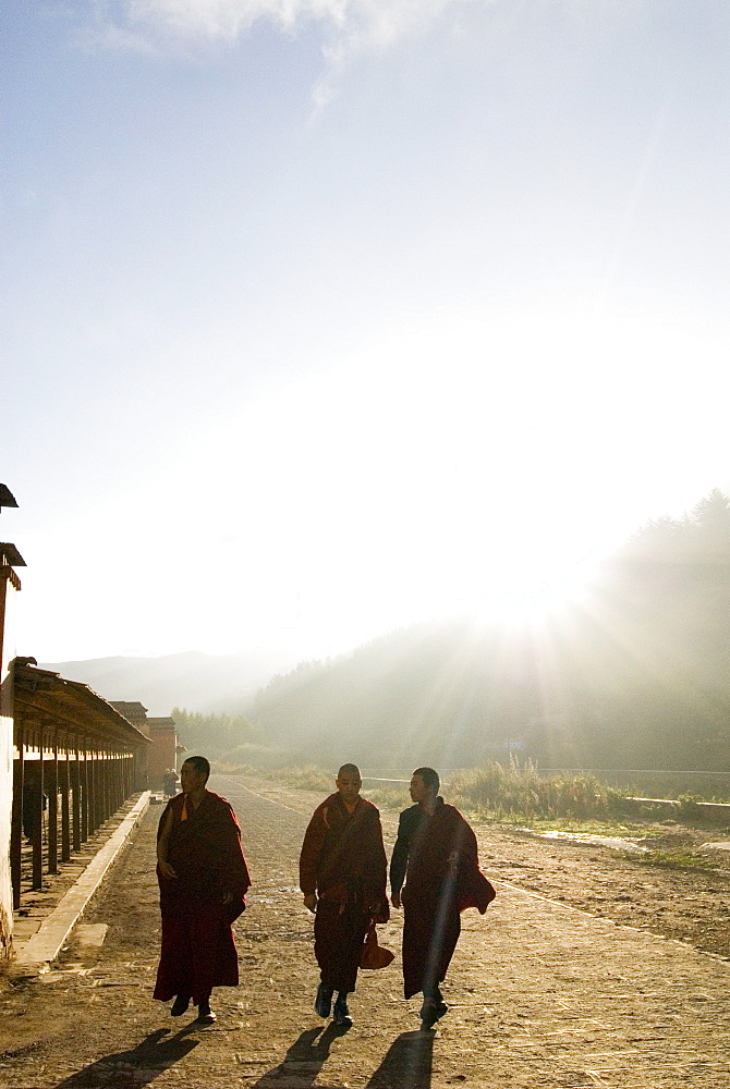 Young monks walking, Xiahe monastery, Xiahe, Gansu, China, Asia - 784-50